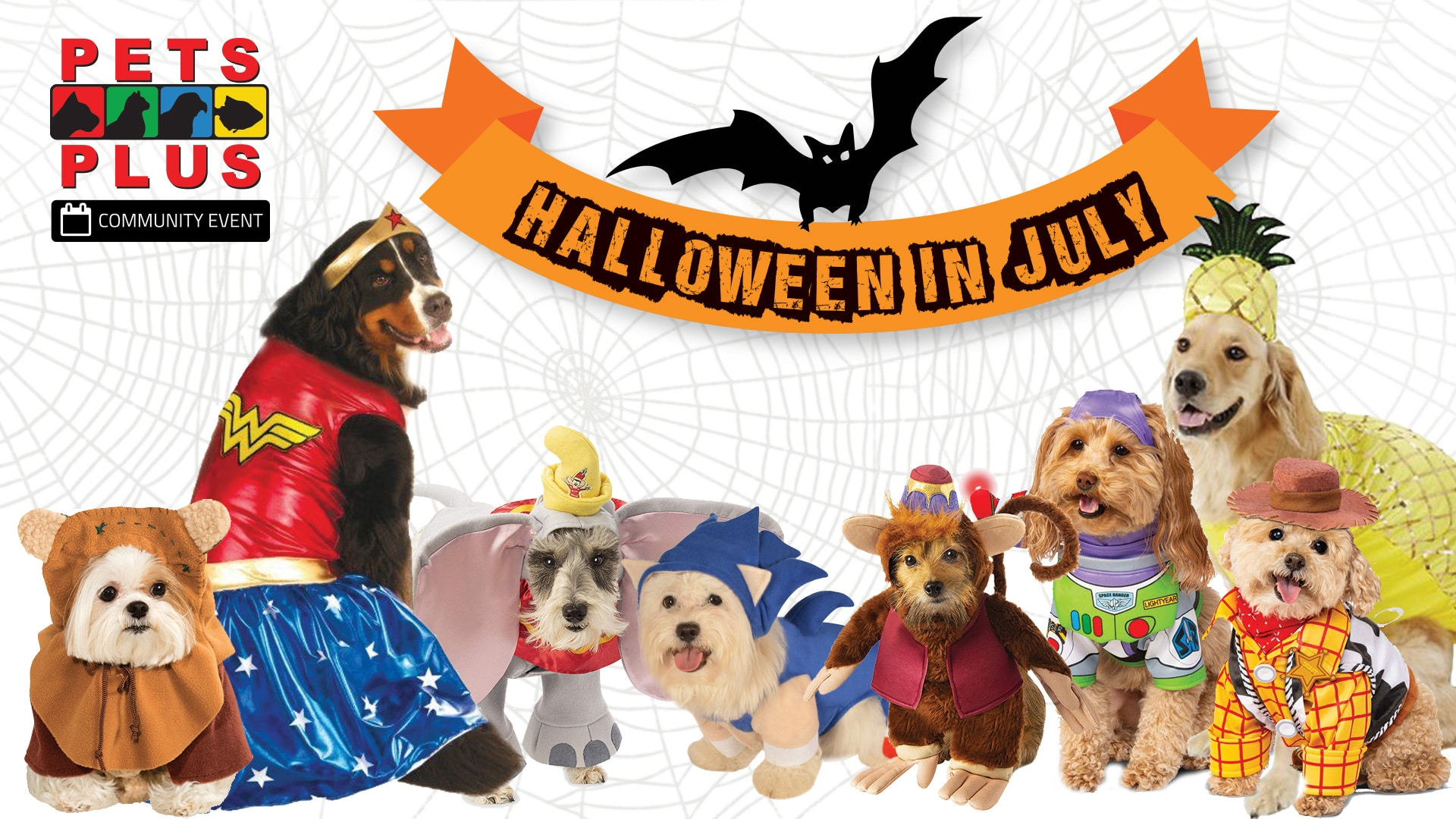 pets plus july halloween costume trunk show
