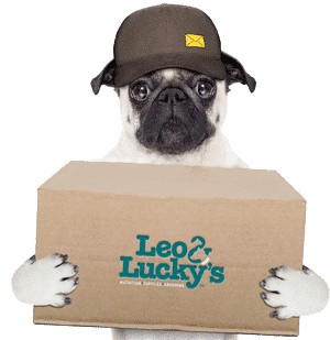 leo and lucky's delivery dog