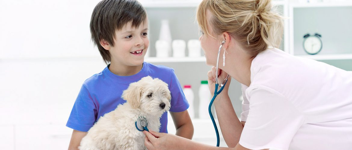 vet with child and puppy