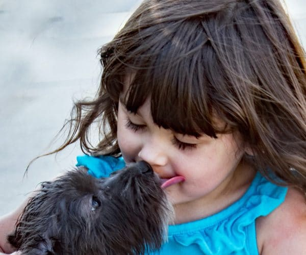 dog kissing little girl blog leo luckys