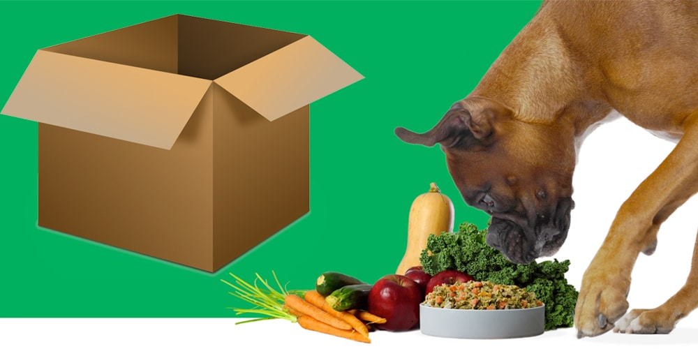 fresh pet food banner